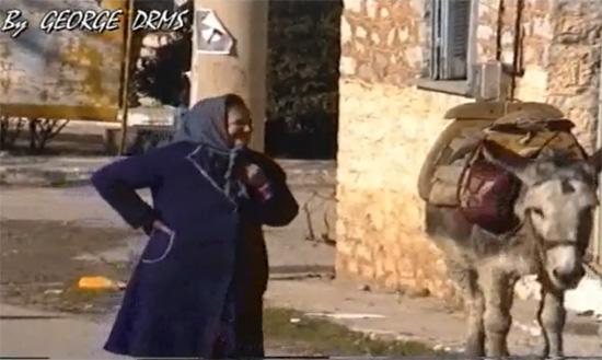 Το γαϊδούρι που μιλάει