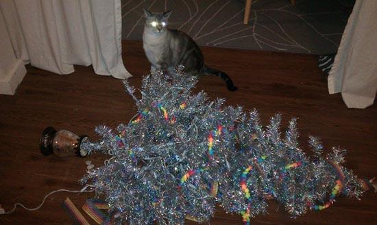 Γάτες που μισούν τα Χριστούγεννα (11)