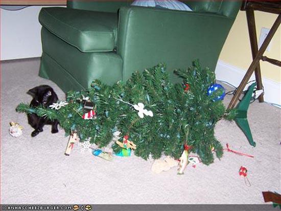 Γάτες που μισούν τα Χριστούγεννα (14)