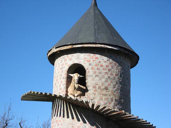 Goat Tower (9)