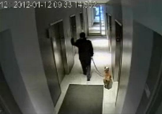 Απίστευτο ατύχημα με σκύλο στο ασανσερ