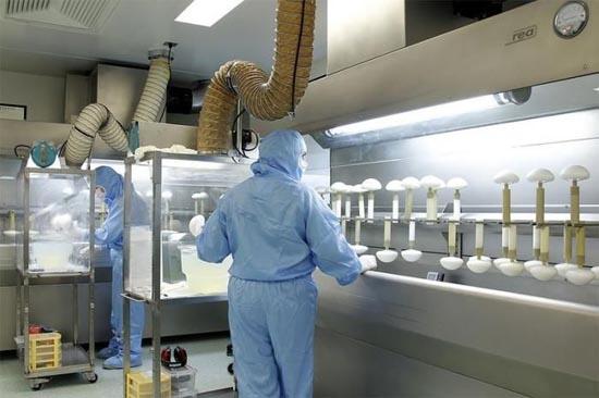 Διαδικασία παραγωγής για εμφυτεύματα στήθους (6)