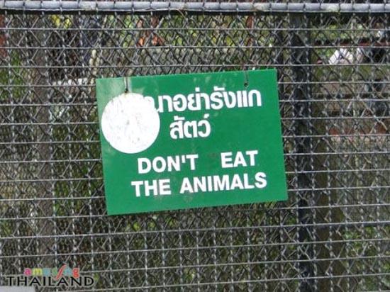 Εν τω μεταξύ στην Ταϊλάνδη (12)
