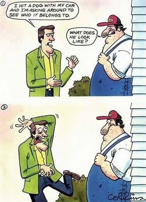Αστείες Φωτογραφίες   Otherside.gr (16)