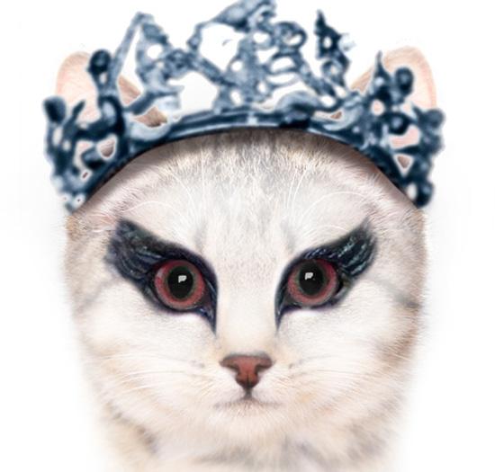 7 διάσημες ταινίες σε εκδοχή με γάτες (8)