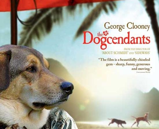 Διάσημες ταινίες σε εκδοχή με σκύλους (10)