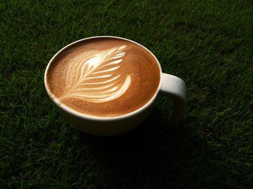 Υπέροχη τέχνη σε καφέ (17)