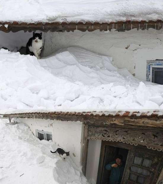 Αυτό θα πει ΠΟΛΥ χιόνι (7)