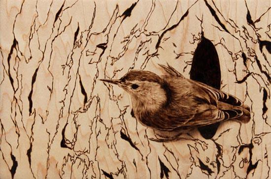 Εντυπωσιακή τέχνη πυρογραφίας από την Julie Bender (1)