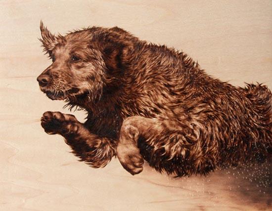 Εντυπωσιακή τέχνη πυρογραφίας από την Julie Bender (2)