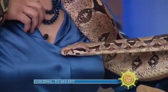 Φίδι τρύπωσε στο πουκάμισο παρουσιάστριας