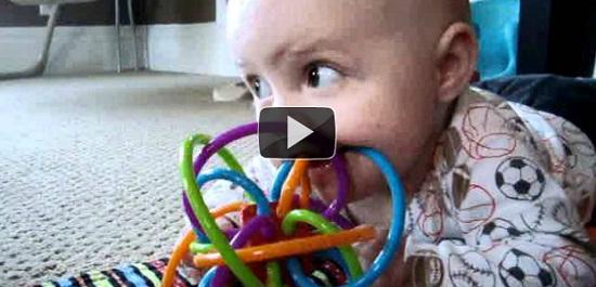 Κουτάβια μαθαίνουν σε μωρό να μασάει