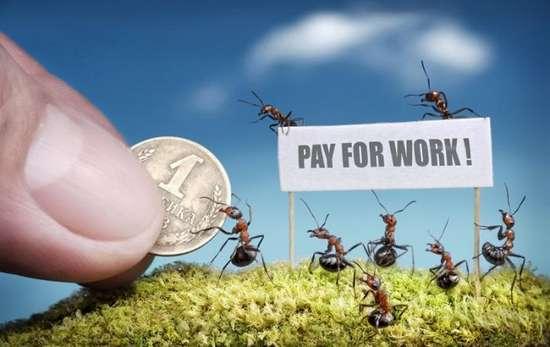 Περιπέτειες μυρμηγκιών (22)