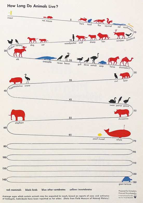 Προσδόκιμο ζωής κάθε ζώου (2)