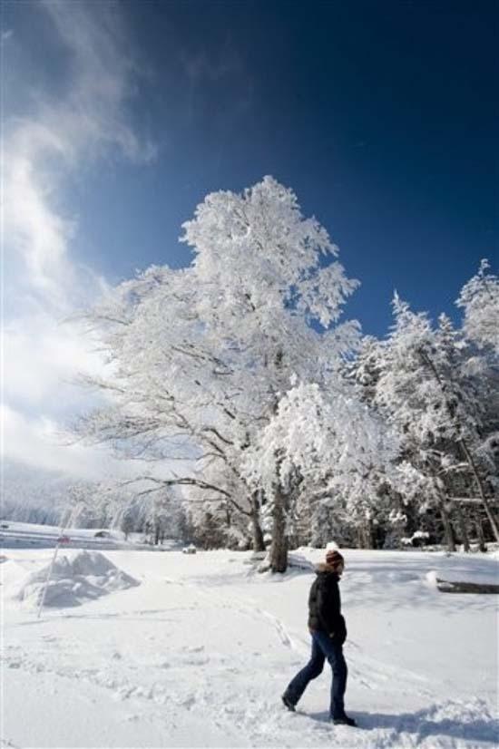Χιόνια στην Ευρώπη (3)