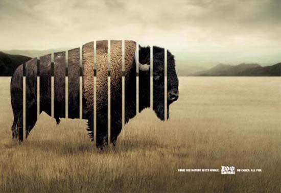 Κορυφαίες διαφημίσεις ζωολογικών κήπων (15)