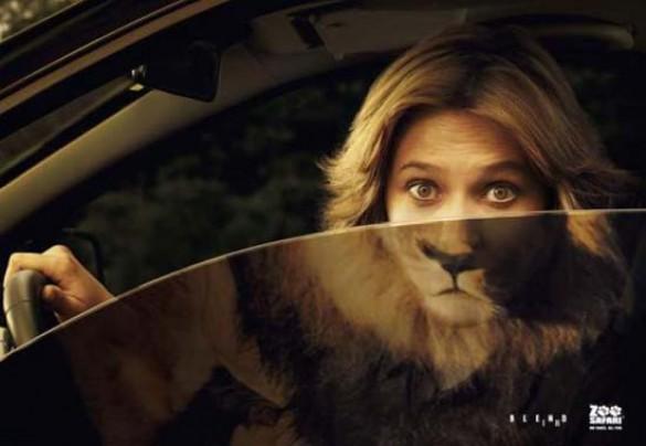Κορυφαίες διαφημίσεις ζωολογικών κήπων (16)