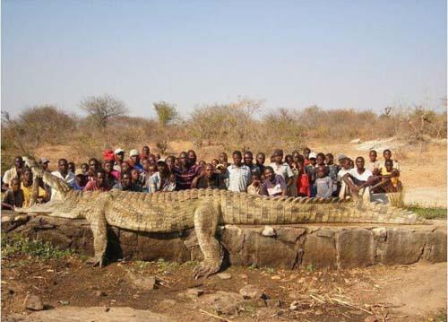 Εν τω μεταξύ στην Αφρική... (26)
