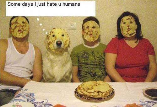 Αστείες Φωτογραφίες (17)