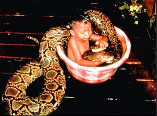 Σοκαριστικές εικόνες με παιδιά και επικίνδυνα ζώα (2)