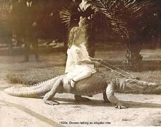 Σοκαριστικές εικόνες με παιδιά και επικίνδυνα ζώα (4)