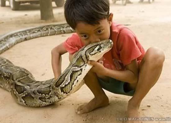 Σοκαριστικές εικόνες με παιδιά και επικίνδυνα ζώα (5)