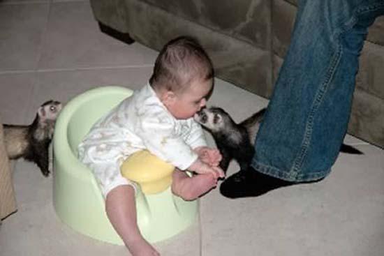 Σοκαριστικές εικόνες με παιδιά και επικίνδυνα ζώα (8)
