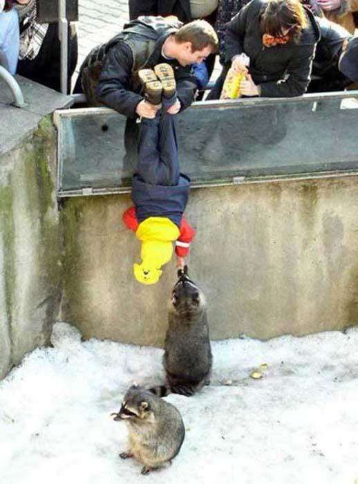Σοκαριστικές εικόνες με παιδιά και επικίνδυνα ζώα (12)