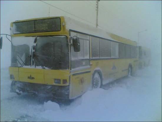 Χειμώνας στη Σιβηρία (6)