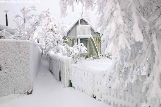 Χειμώνας στη Σιβηρία (12)