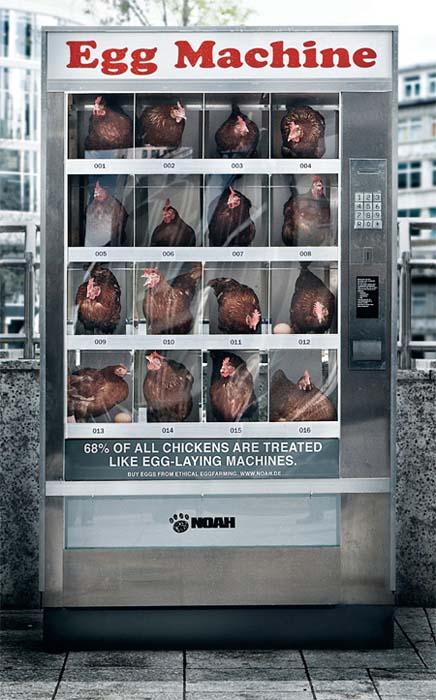 Ένας αλλιώτικος αυτόματος πωλητής αυγών (2)