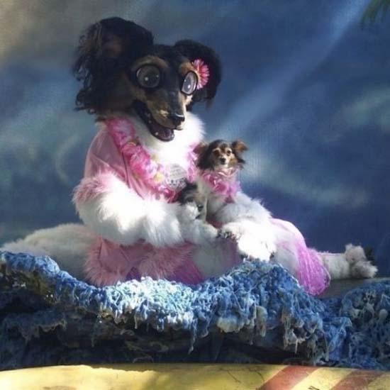 Ανεξήγητες φωτογραφίες με σκύλους (8)