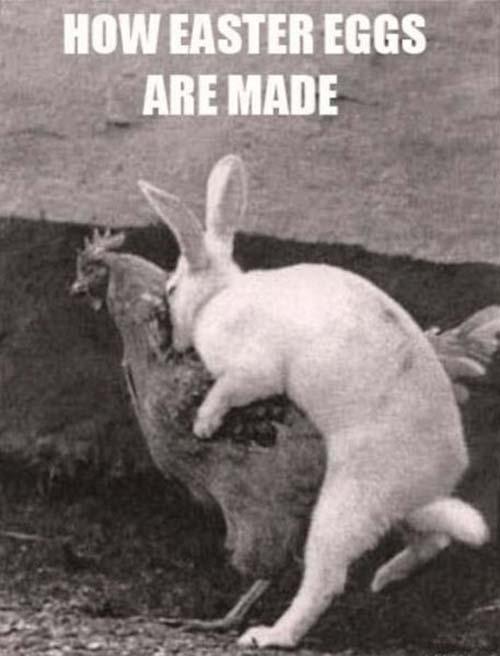 Αστείες & παράξενες πασχαλινές φωτογραφίες (24)