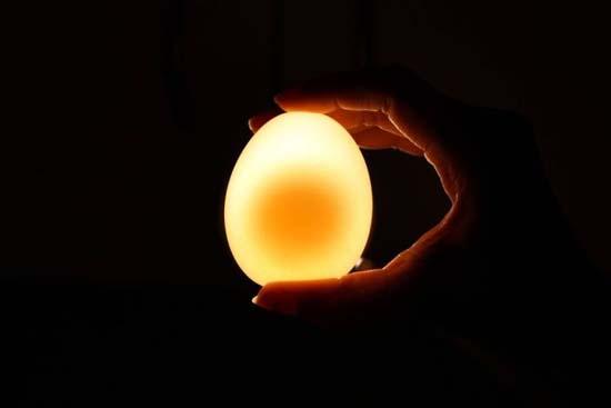 Ενδιαφέρον πείραμα: Αβγό μέσα σε ξύδι (7)