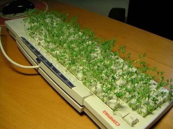 Εναλλακτικές χρήσεις για τον υπολογιστή σας (12)