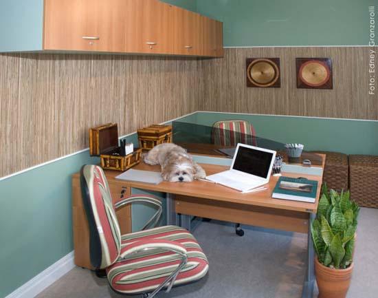 Εντυπωσιακά γραφεία στο σπίτι (20)