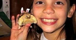 Ένα κορίτσι και η χελώνα της τότε και τώρα