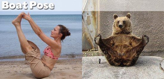 Όταν τα ζώα κάνουν μαθήματα Yoga (26)