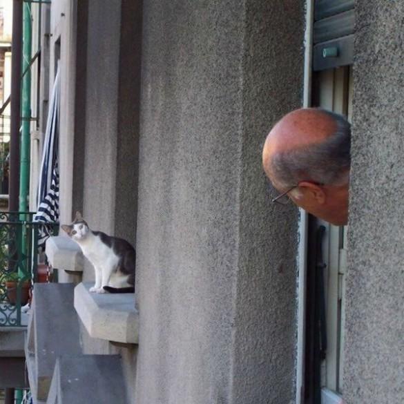 Οι γείτονες | Φωτογραφία της ημέρας