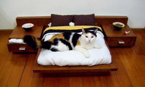 Πολυτελή έπιπλα για γάτες (1)