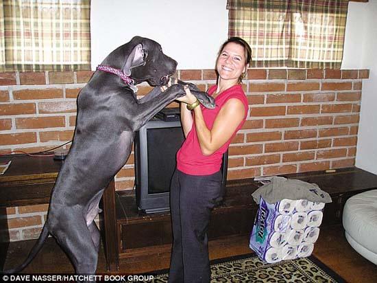 Ο ψηλότερος σκύλος στον κόσμο (3)