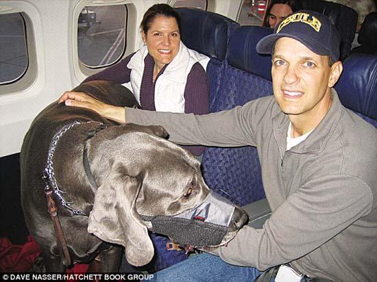 Ο ψηλότερος σκύλος στον κόσμο (11)
