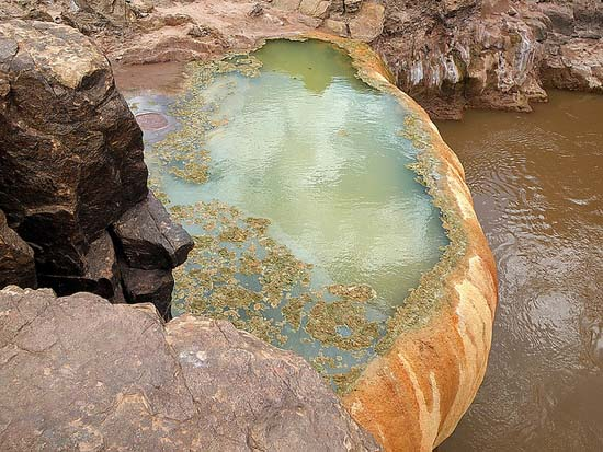 Pumpkin Spring: Μια θανατηφόρα πισίνα με αρσενικό στο Grand Canyon (4)