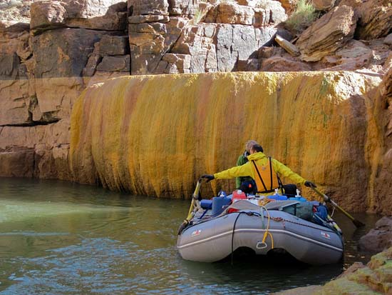 Pumpkin Spring: Μια θανατηφόρα πισίνα με αρσενικό στο Grand Canyon (5)