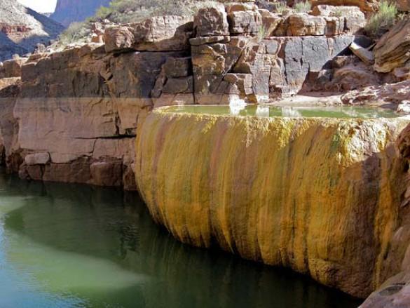 Pumpkin Spring: Μια θανατηφόρα πισίνα με αρσενικό στο Grand Canyon (6)