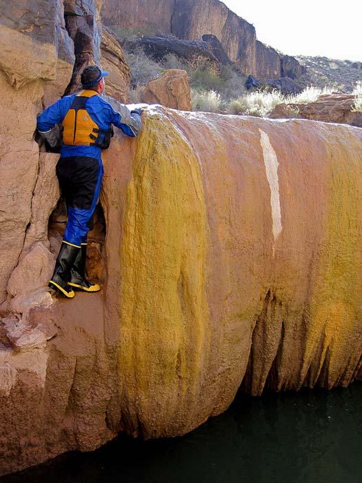 Pumpkin Spring: Μια θανατηφόρα πισίνα με αρσενικό στο Grand Canyon (7)