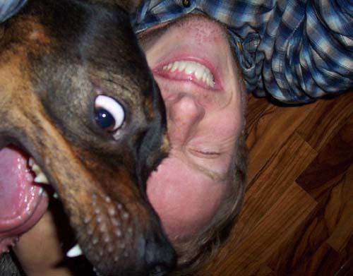 Σκύλοι με... τρέλα στα μάτια! (3)