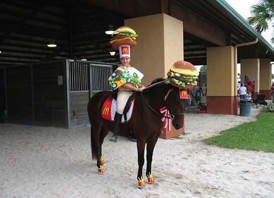 Άλογα που μισούν τη ζωή τους (7)