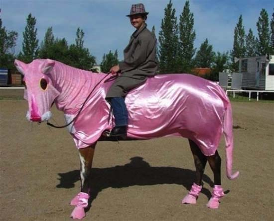 Άλογα που μισούν τη ζωή τους (9)
