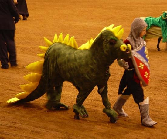 Άλογα που μισούν τη ζωή τους (17)